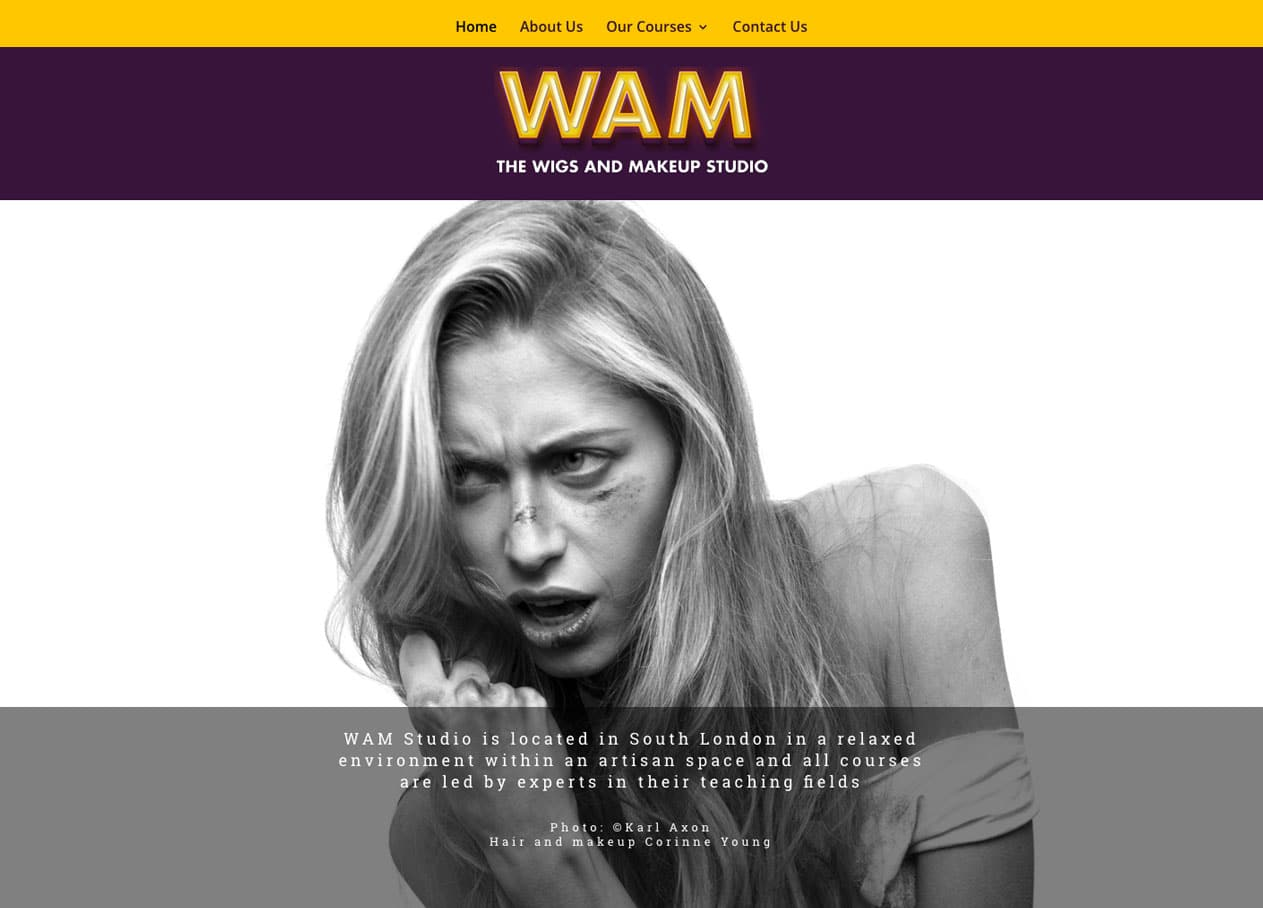 wam-website-homepage