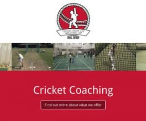Cricket from the Ground Up web design