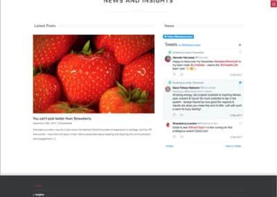 Strawberry web design insights