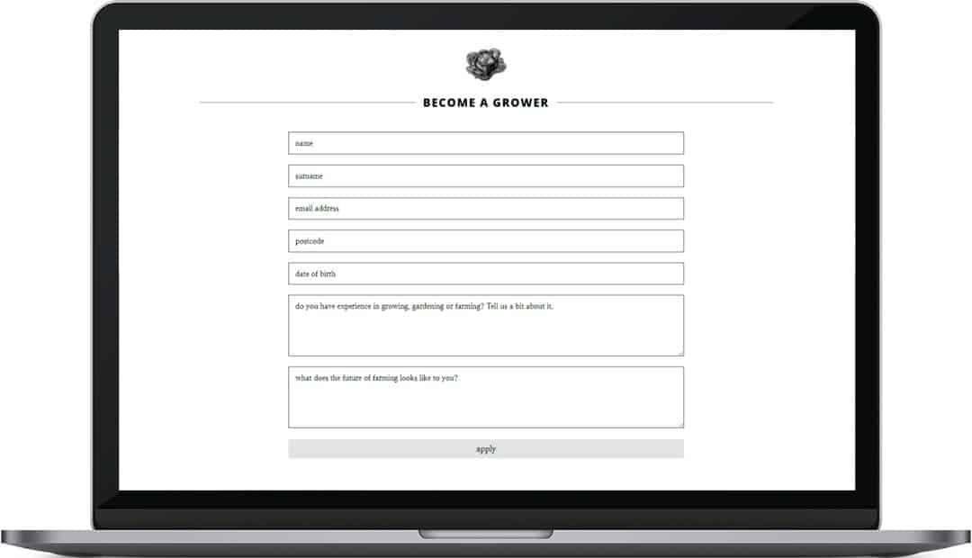 High View Farmstead web design contact