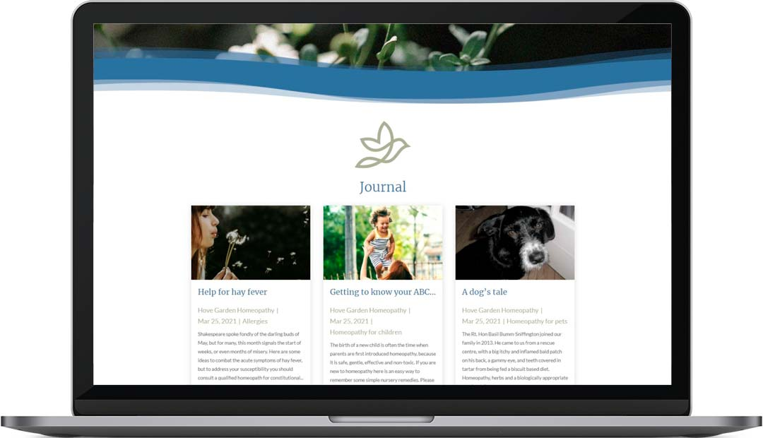 Hove Garden Homeopathy Web Design Journal